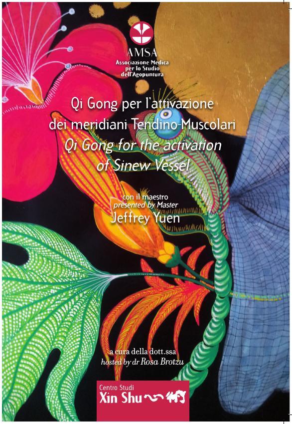 DVD Qi Gong per l'attivazione dei Meridiani Tendino Muscolari - Jeffrey Yuen e Rosa Brotzu